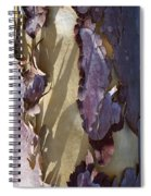 Bark Texture Spiral Notebook