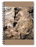Bark-vision On Abstraction Theme  Spiral Notebook
