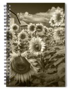 Barn And Sunflowers In Sepia Tone Spiral Notebook