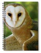 Barn Owl-6553 Spiral Notebook