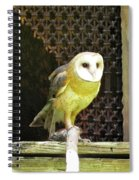 Barn Owl On The Prowl Spiral Notebook