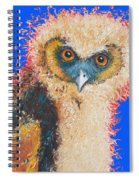Barn Owl Painting Spiral Notebook