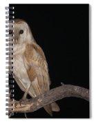 Barn Owl Tyto Alba Spiral Notebook