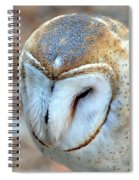 Barn Owle 1 Spiral Notebook