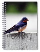 Barn Swallow At Fort Larned Spiral Notebook