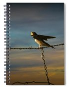 Barn Swallows On Barbwire Fence Spiral Notebook
