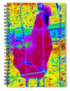 Barnyard Hero #4 Spiral Notebook