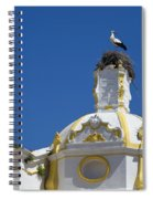 Baroque Church And Storks Nest Spiral Notebook