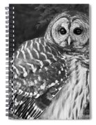 Barred Owl Beauty Spiral Notebook