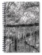 Barred Owl In Monochrome Spiral Notebook