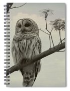 Barred Owl On A Tree Spiral Notebook