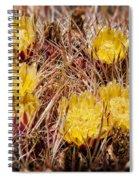 Barrel Cactus Flowers 2 Spiral Notebook