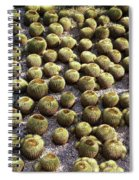Barrel Garden Spiral Notebook