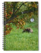 Barton Backyard Spiral Notebook