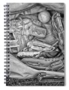 Baseball Gloves Bw Spiral Notebook