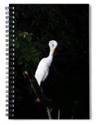 Bashful Egret Spiral Notebook