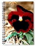 Bashful Pansy Spiral Notebook