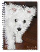 Bashful Puppy Spiral Notebook