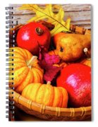 Basket Full Of Autumn Spiral Notebook