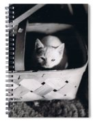 Basket Full Of Charlemagne Spiral Notebook