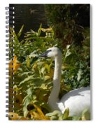 Basking By The Pond Spiral Notebook