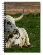 Basking In The Sun Spiral Notebook