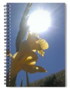 Basking Spiral Notebook