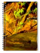 Basking Sunset Spiral Notebook