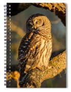 Bathed In Sunset Spiral Notebook