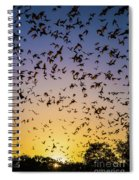 Bats At Bracken Cave Spiral Notebook