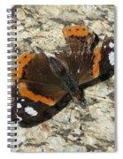 Battered Butterfly Spiral Notebook
