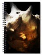 Battered Conch  Spiral Notebook