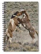 Battle For Dominance Spiral Notebook