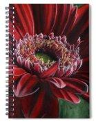 Bauble Spiral Notebook