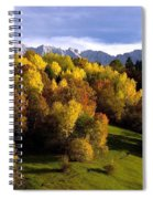 Bavarian Alps 2 Spiral Notebook