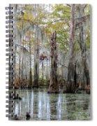 Bayou Magic Spiral Notebook