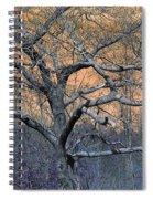 Bb's Tree 2 Spiral Notebook