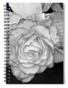 Be Gentle Bw Spiral Notebook