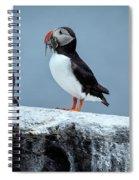 Be Mine... Spiral Notebook