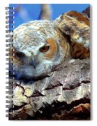 Be The Tiger Spiral Notebook
