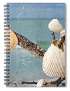 Beach Art - Seashell Shrine - Sharon Cummings Spiral Notebook