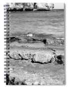 Beach At Dominican Republic Spiral Notebook