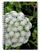 Beach Bloom Spiral Notebook