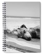 Beach Dreams Are Made Of These In Black And White Spiral Notebook