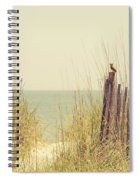 Beach Fence In Grassy Dune South Carolina Spiral Notebook