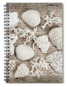 Beach Finds Spiral Notebook