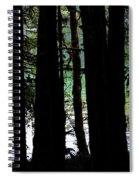 Beach Forest Spiral Notebook