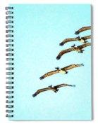 Beach Formation Spiral Notebook