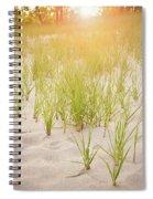 Beach Grasses Number 3 Spiral Notebook