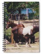 Beach Horses Spiral Notebook
